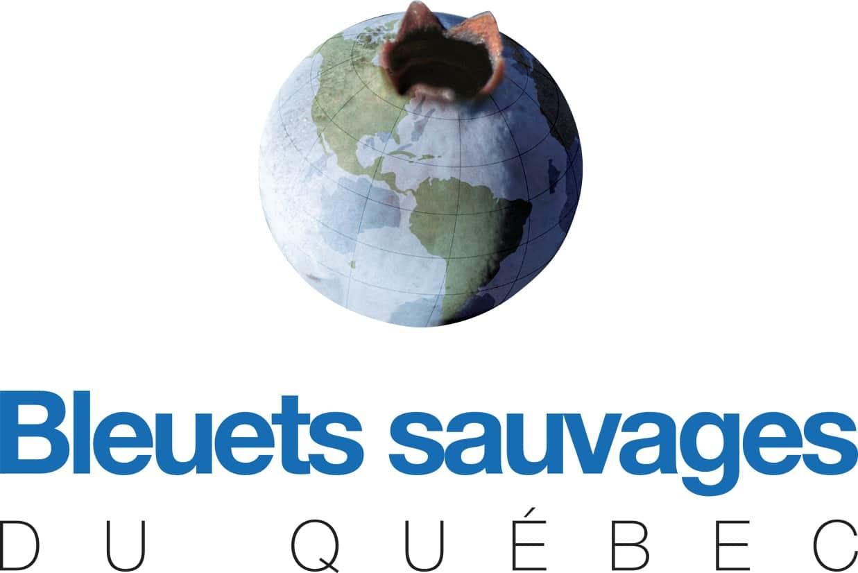 Bleuets sauvages du Québec